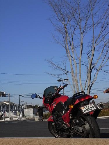 090125fuwari.jpg